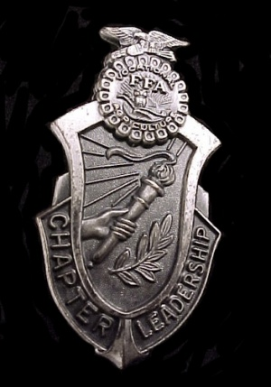 Future Farmers Of America Ffa Lapel Pin Vintage Chapter Leadership