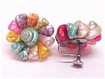 Multi-Color Conch Shell Screwback Earrings Vintage