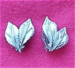 Click here to enlarge image and see more about item 313: Pastelli Brushed Silvertone Leaf Cllip On Earrings