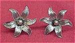 Click to view larger image of Beau Sterling Tropical Flowers Screw Earrings Vintage Nice (Image1)