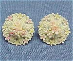 Click here to enlarge image and see more about item 358: Celluloid Tropical Floral Bouquet Screw Earrings Flower