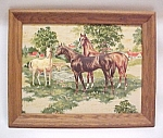 Click here to enlarge image and see more about item 68299: Horse Mare Colt Foul 3D 3 D Dimensional Framed Picture