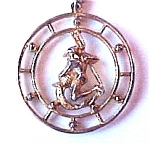 Celebrity Aquarius Zodiac Sign Circle Pendant & Chain