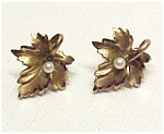 Click here to enlarge image and see more about item 72864: Vintage Winard 1/20 12K gf LEAF Earrings w/ Faux Pearls