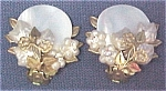 Click here to enlarge image and see more about item 72884: Mother of Pearl & Brass Clip Earrings Robert? Haskell