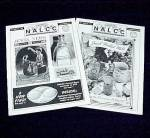 NALCC Newsletter Jewel T Tea Autumn Leaf China Magazine