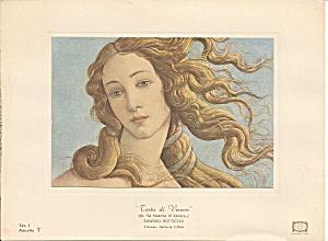 Testa di Venere vintage print (Image1)