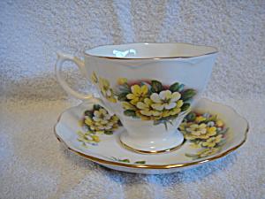 Royal Albert teacup and saucer Yellow cosmos (Image1)