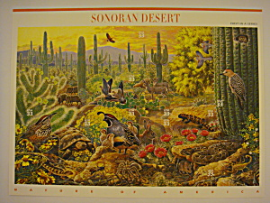 Sonoran Desert Full Pane Of Usps Stamps