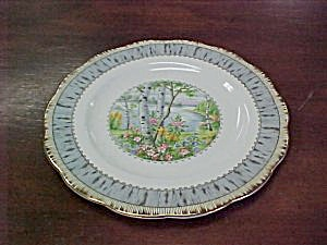 Royal Albert Silver Birch Luncheon Plate