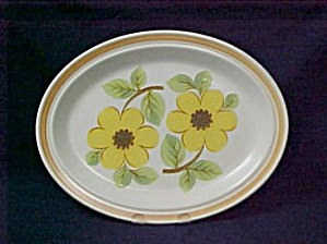 Royal Doulton Summer Days Platter