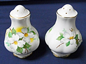 Royal Albert White Dogwood Salt & Pepper Set