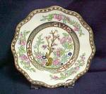 Click here to enlarge image and see more about item 193: Coalport Indian Tree (Multi Color Sc) Luncheon Plate