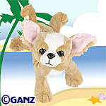Click here to enlarge image and see more about item chihuahua: Ganz Webkinz Chihuahua New Unopened Tags