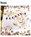 Click here to enlarge image and see more about item florida: Florida Vintage PatternTablecloth Souvenir