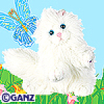 Click here to enlarge image and see more about item persiancat: Ganz Webkinz Persian Cat New Unopened Tag