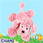 Click here to enlarge image and see more about item pinkpoodle: Ganz Webkinz Pink Poodle New Unopened Tag
