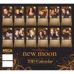 Click to view larger image of 2010 New Moon Twilight Calendar (Image2)