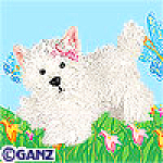 Click here to enlarge image and see more about item whiteterrier: Ganz Webkinz White Terrier Unopened Tag