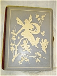 Click here to enlarge image and see more about item vpah01: Victorian Celluloid Photo Album Fairy/Cherubs