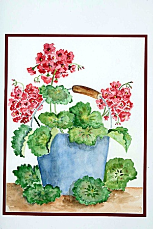 A Bucket Of Geraniums