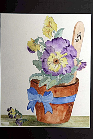 Bucket of Pansies (Image1)