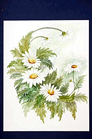 Floral Watercolor - Daisies (Image1)