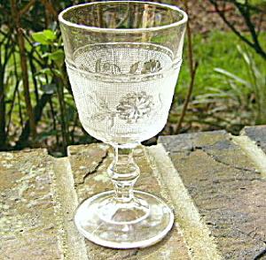 Dahlia Champagne (Image1)