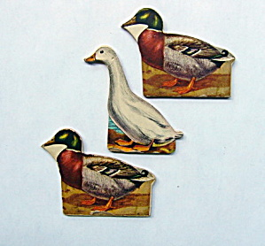 Toy Cardboard Lithographed Ducks (3) (Image1)