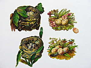 Victorian Die-cut Bird Nests