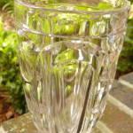 Click to view larger image of Washington Flint Celery (Image3)