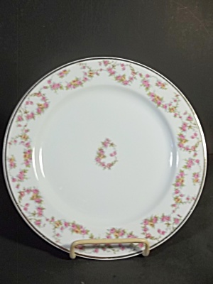 Limoges Dinner Plate & Limoges - Porcelain and pottery - TIAS.com