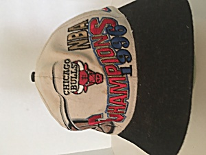 Chicago Bulls NBA Champions 1996 (Image1)