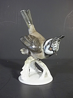 Rosenthal Blue Jay (Image1)