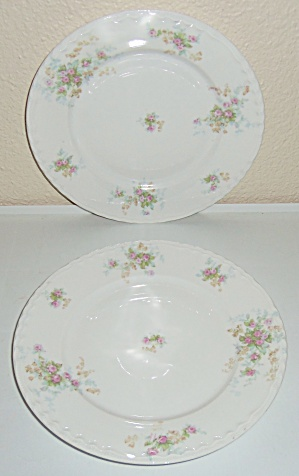Theodore Haviland China Pr Floral Decorated Plates