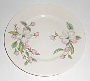Franciscan Pottery Fine China Chelan Salad Plate Mint