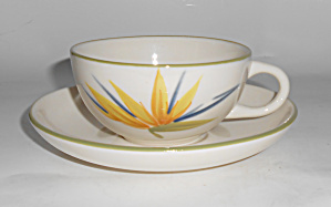 Winfield Pottery China Bird Of Paradise Cup/saucer Mint
