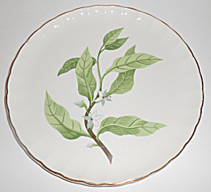 W. S. George Pottery China B8760 Floral Luncheon Plate! (Image1)