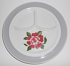 Jackson China Restaurant Red Rose Airbrushed Grill Plt