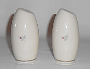 Triomphe China Porcelain Caress Platinum Salt/pepper