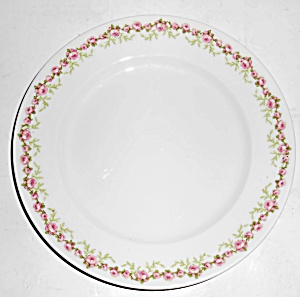 Chas Field Haviland Limoges Pink Roses Salad Plate