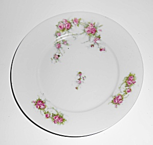 Austria Victoria China Porcelain Pink Roses Salad Plate