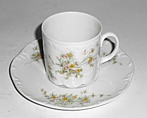Rosenthal Porcelain China Classic Rose Catherine Demi  (Image1)