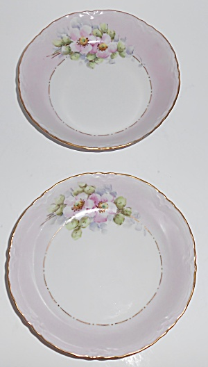 Hutschenreuther China Porcelain Pr Floral Pink W/gold F