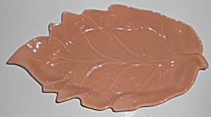 Catalina Pottery Floral Art Ware #C-347 Oatmeal/Coral B (Image1)