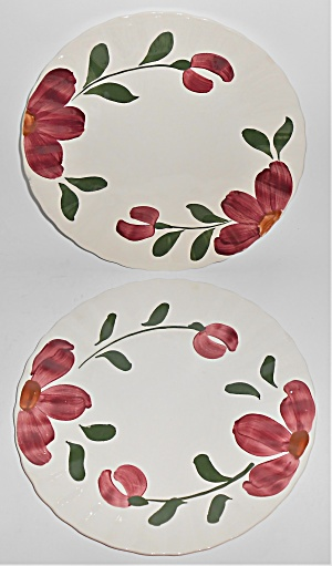 Blue Ridge Pottery China Pair Windflower Dinner Plates