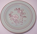 FRANCISCAN POTTERY TIGER FLOWER DINNER PLATE!