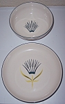WINFIELD CHINA POTTERY ROYAL CORONATION BOWL/PLATE SET!