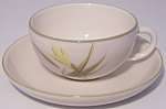 WINFIELD CHINA POTTERY TIGER IRIS CUP/SAUCER SET!
