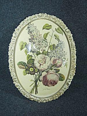j. l. Prevost Botanical Print in metal frame  (Image1)